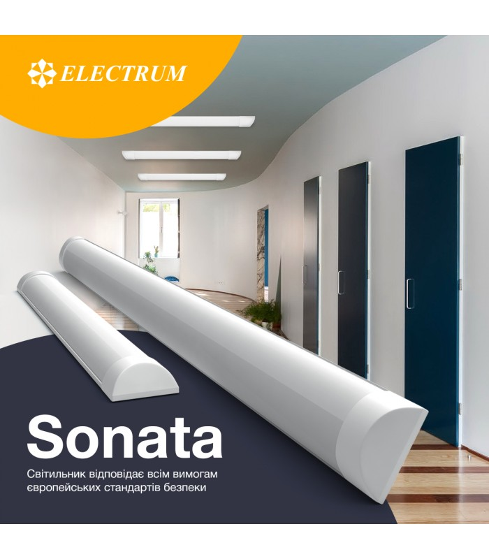 sonata2-700x800